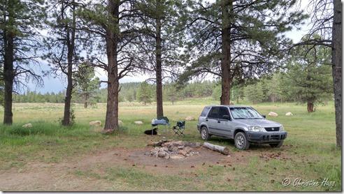 Camp at Bowers Flat, Utah