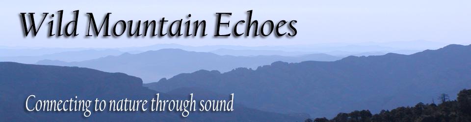 Wild Mountain Echoes