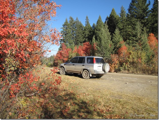 A CR-V covered with Montana mud, amidst Wyoming fall color.